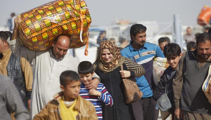 Dorcas / Irak